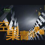 华扬数字营销研究院:2017空巢青年手册