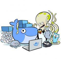 Docker上的MySQL:MySQL容器的单主机网络