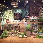 新零售创新的样板店:三只松鼠、茵曼、苏型生活