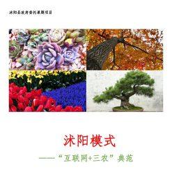 """浙江大学:沭阳模式 ——""""互联网+三农""""典范"""