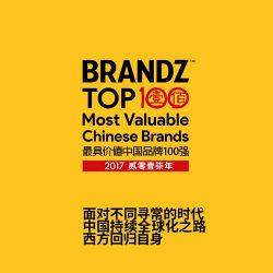 2017 BrandZ™最具价值中国品牌100强报告