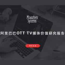 秒针系统&GfK:2017阿里OTT TV 价值研究报告
