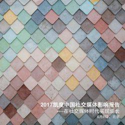凯度:2017中国社交媒体影响报告