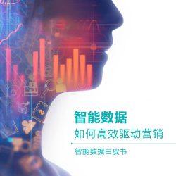 Chinapex创略中国:2017智能数据白皮书——智能数据如何高效驱动营销