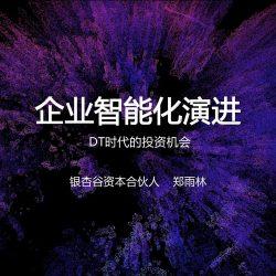 银杏谷资本 郑雨林:企业智能化演进——DT时代的投资机会