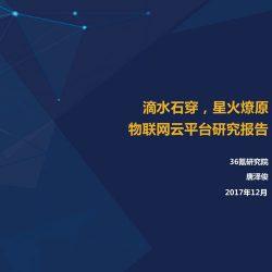 36氪研究院:2017物联网云平台研究报告