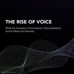 Invoca:语音技术的崛起