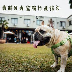 VC SaaS:2018年最新宠物行业数据报告