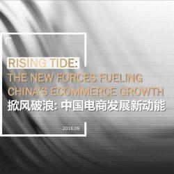 Wavemaker:掀风破浪——中国电商发展新动能