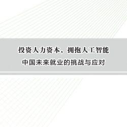 中国发展研究基金会&红杉资本:拥抱人工智能——中国未来就业的挑战与应对