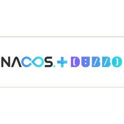 Nacos 0.6版本发布,支持Dubbo生态并且支持Docker部署