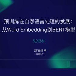 张俊林:从Word Embedding到BERT模型