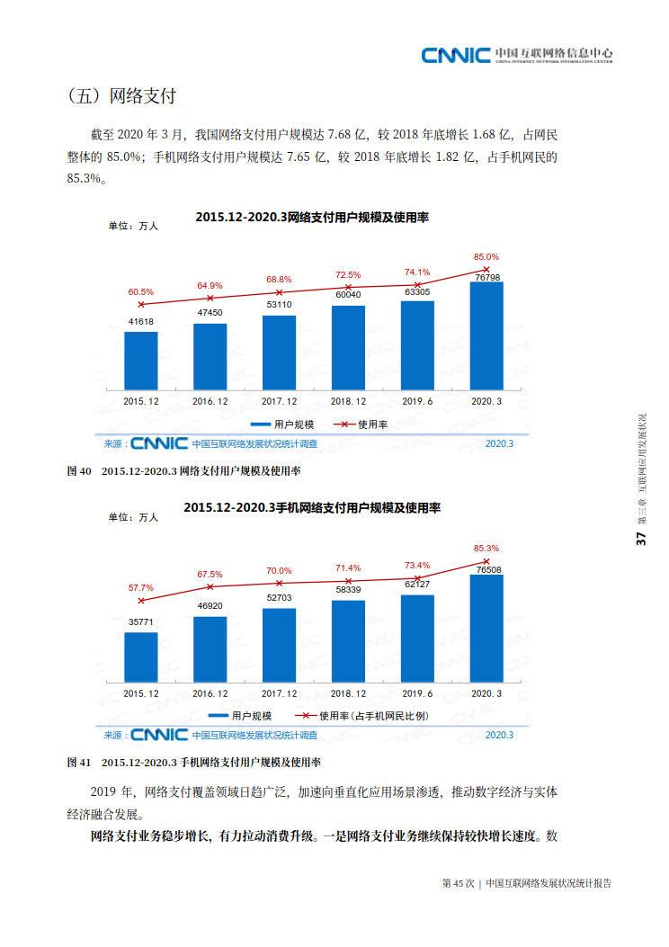 CNNIC 第45次《中国互联网络发展状况统计报告》(2020年4月版)_45.jpg