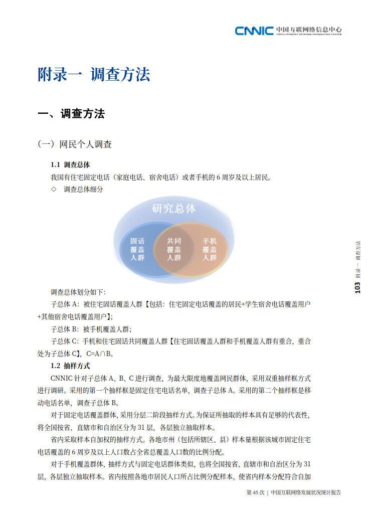 CNNIC 第45次《中国互联网络发展状况统计报告》(2020年4月版)_111.jpg